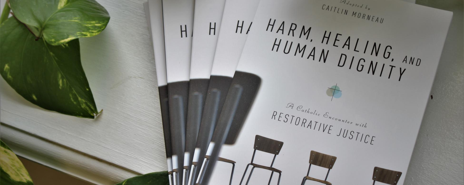 Image: Cover of CMN's new book, Harm, Healing and Human Dignity, surrounded by green plant.